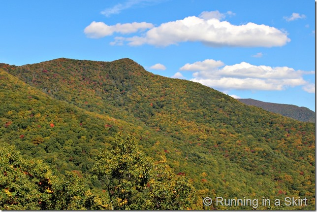 Blue Ridge Parkway in the fall- so stunning!