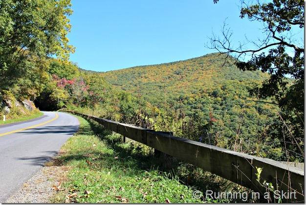 Blue Ridge Parkway fall