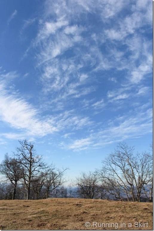 Bearwallow Mountain-34-9