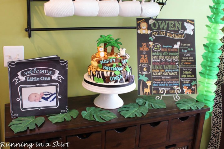 Owen's 1st Birthday-15-4