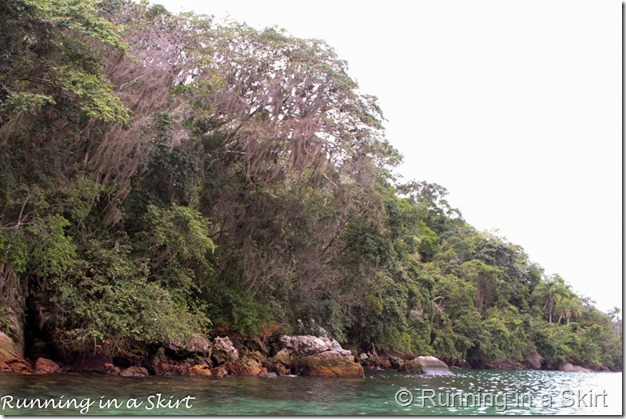 Ilha Grande Blog-20