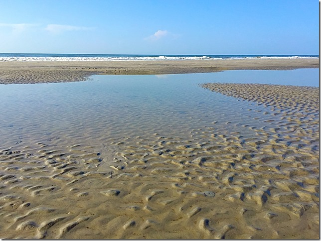 Hilton Head Island Tidal Pools