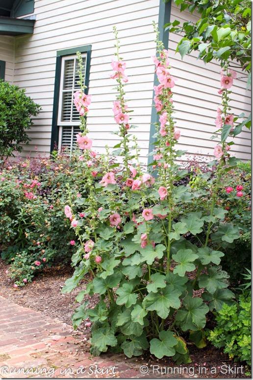 barnsely gardens-5-2
