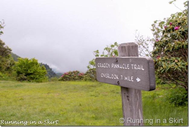 craggy gardens hike-179-15