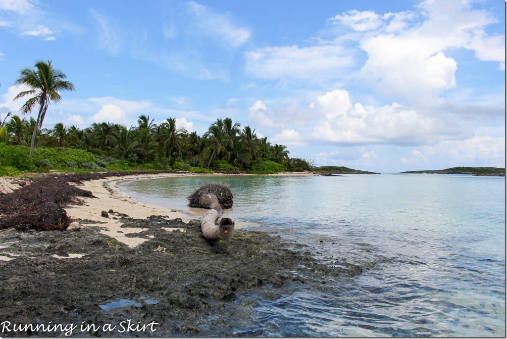 Tahiti Beach, Elbow Cay, Hope Town