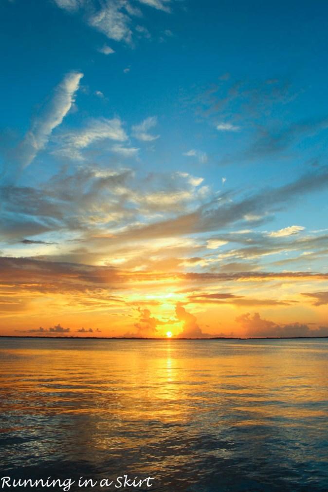 Bahamas, Elbow Cay, August 2015-582-24