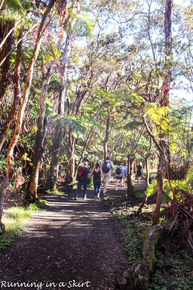 Hawaiian Volcanoes National Park Tips-12