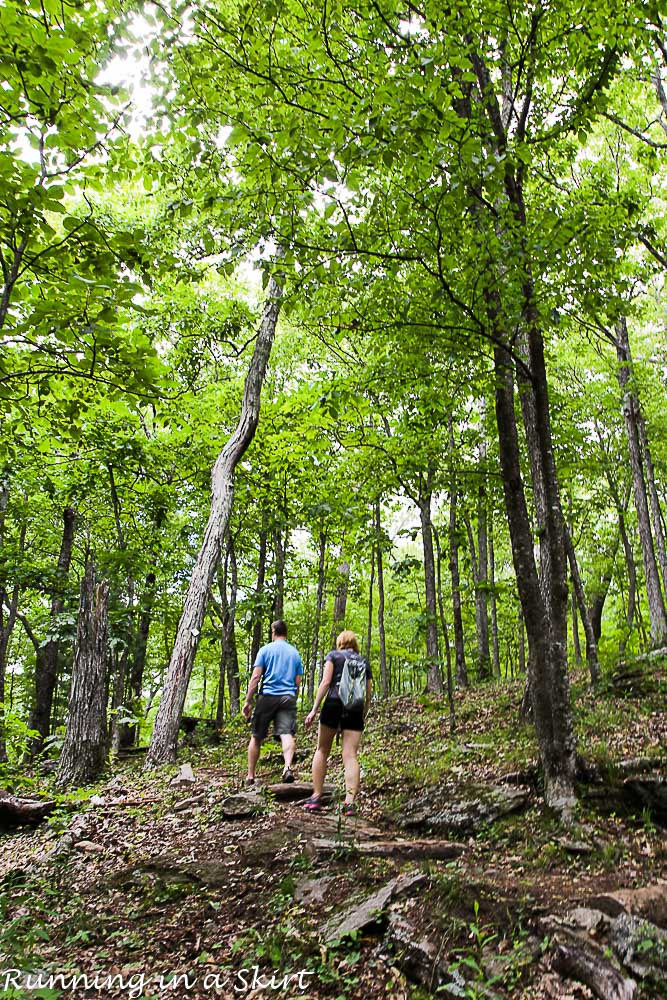 Bearwallow Mountain Summer Hike- Western North Carolina Hiking