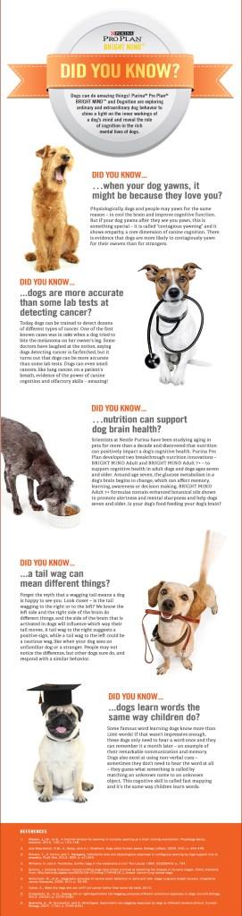 Purina Pro Bright Minds Senior Dogs Information