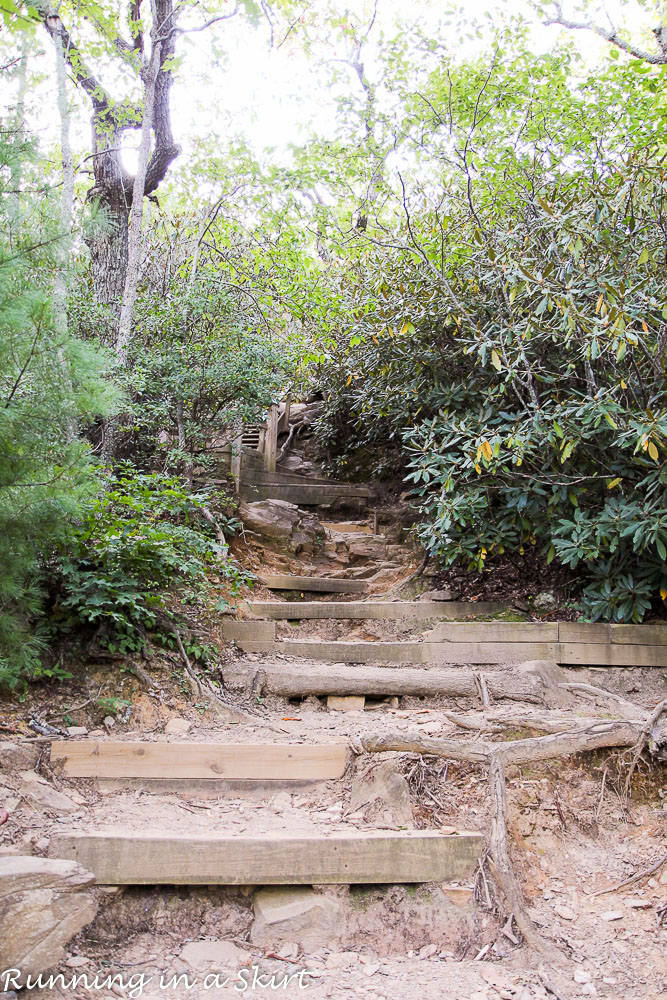 lookout-mountain-montreat-hiking-7