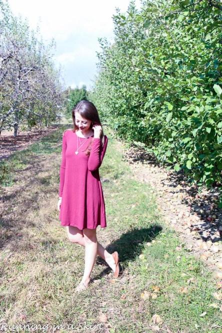 maroon-swing-dress-47