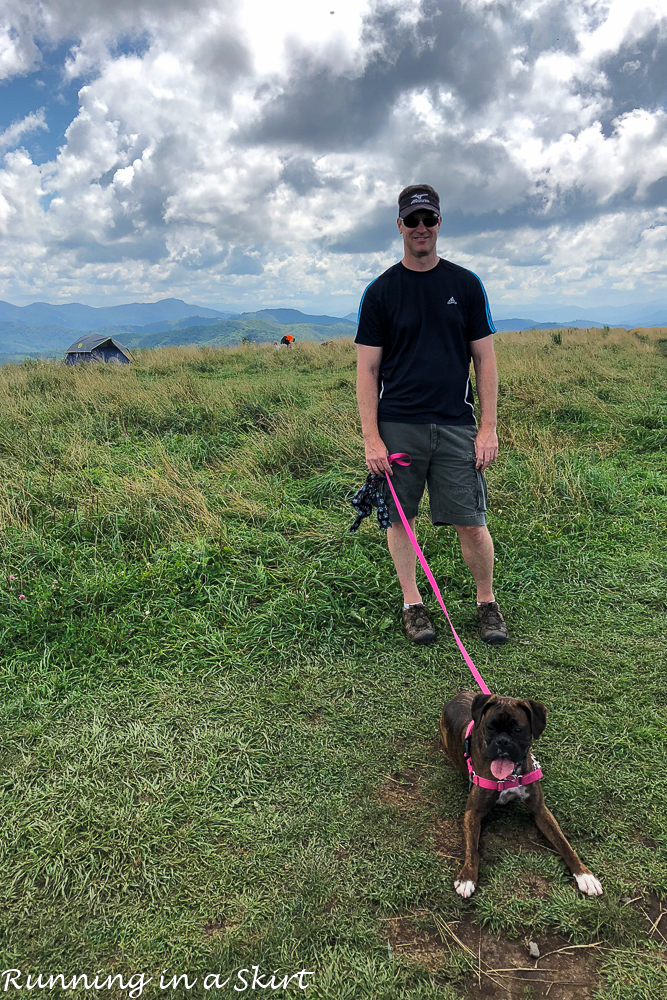 Max Patch Hike near Asheville NC with dog