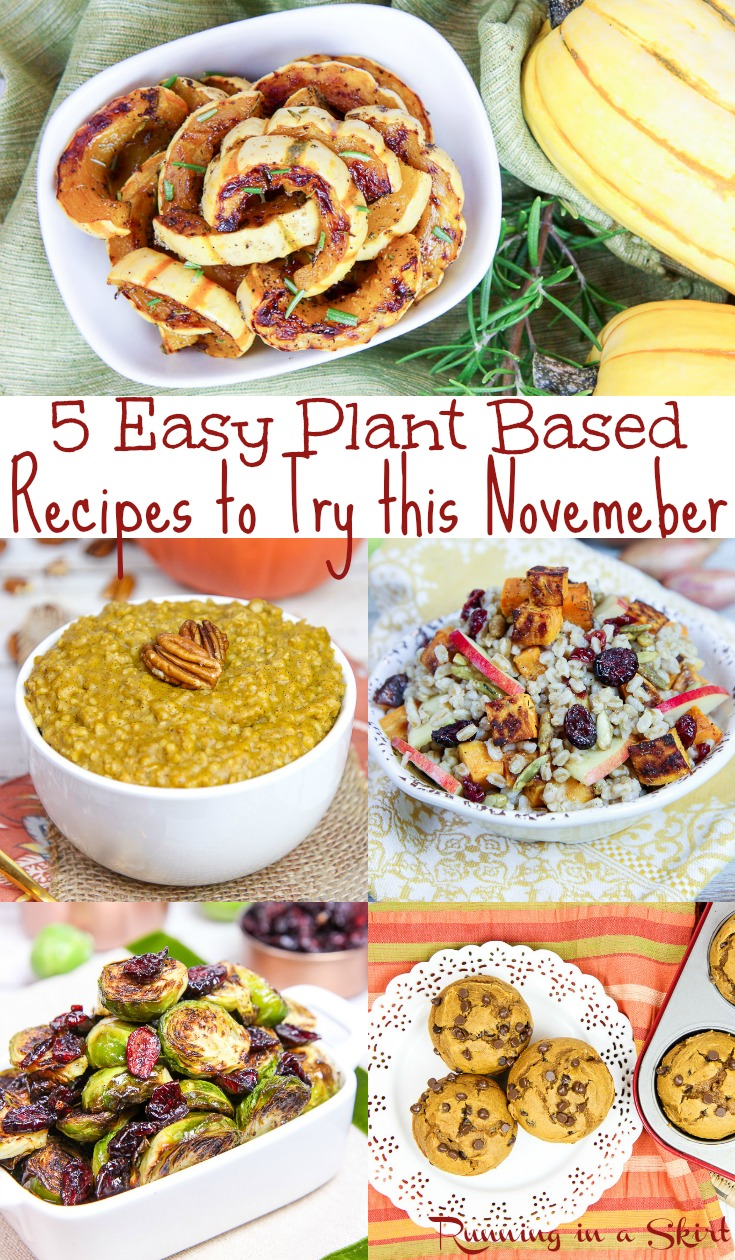 5 Healthy Vegetarian November Recipes - these healthy, easy and simple ideas include dinner, breakfast, dessert and sides including the best vegan and slow cooker / crock pot options!  These clean eating and cozy comfort foods are perfect for the season. / Running in a Skirt