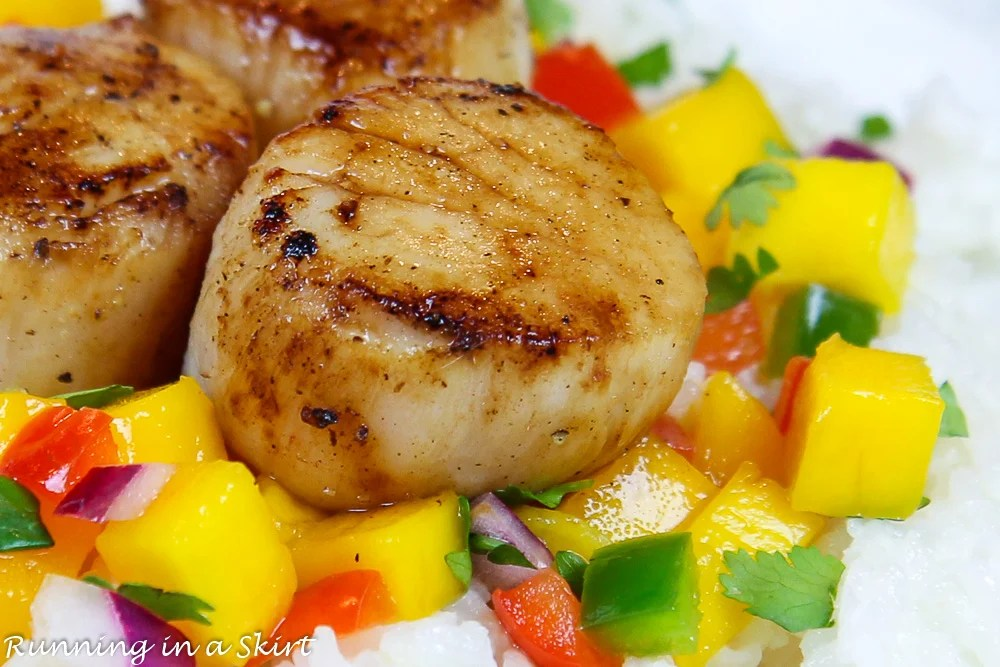Close up of pan seared scallop.