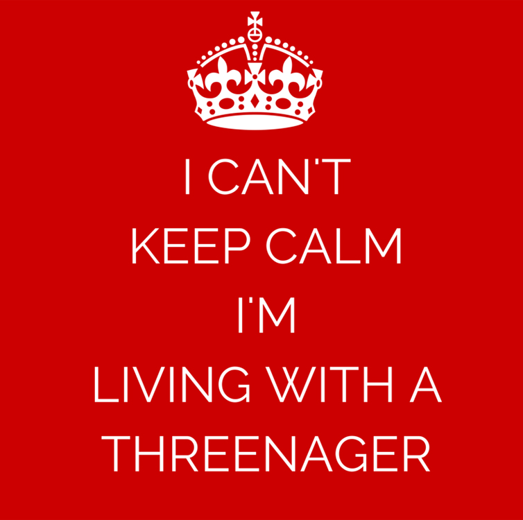 5 Terrible Awful Things About Having a Threenager   Running on Happy