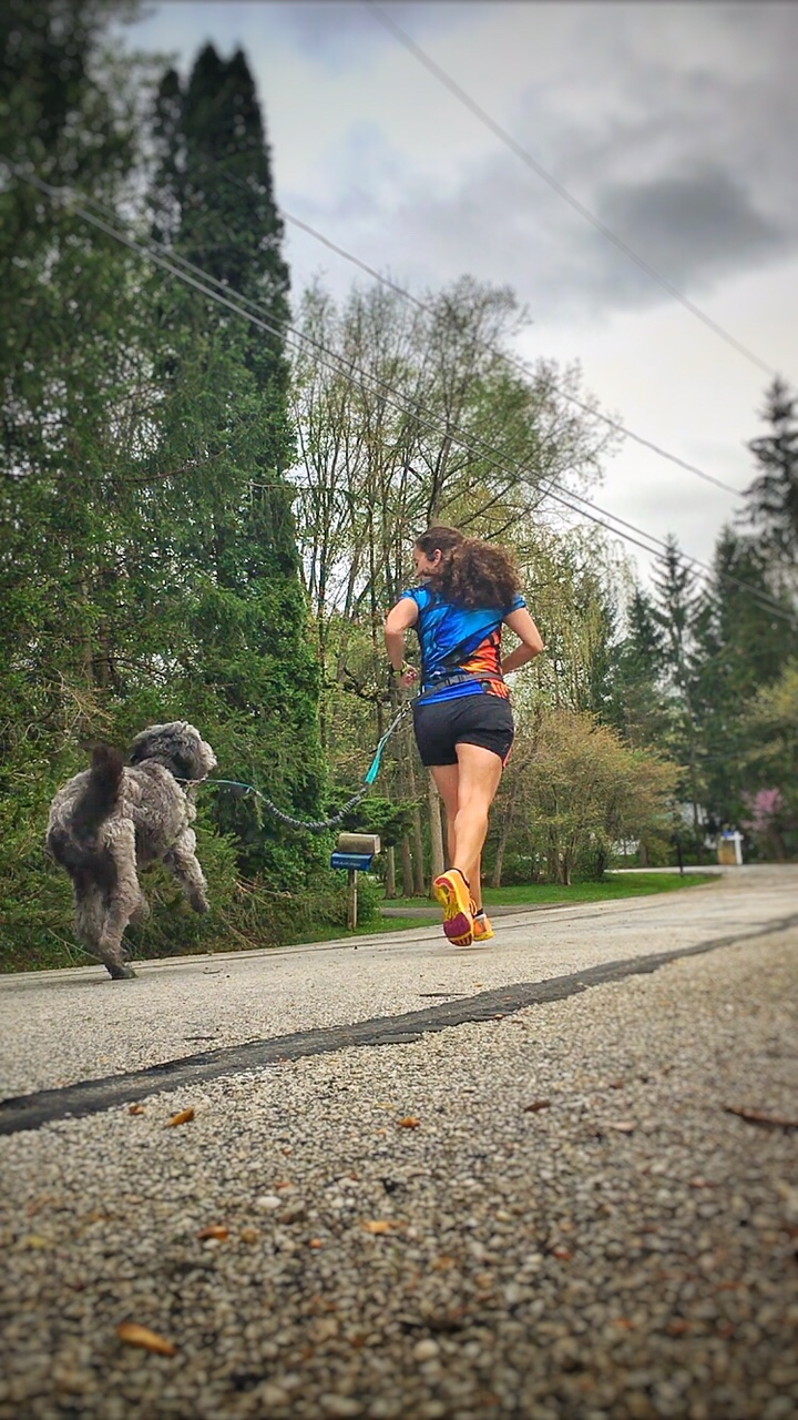 5 Tools for a Successful Run with a Canine Companion | Running on Happy