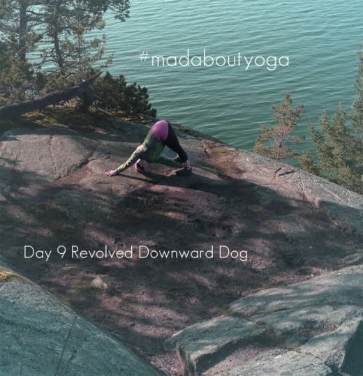 Daily Yoga Pose Complete! Day 9 of #madaboutyoga was Revolved Downward Dog, a favourite of mine.