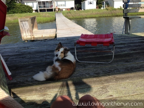 Zoe on the Dock