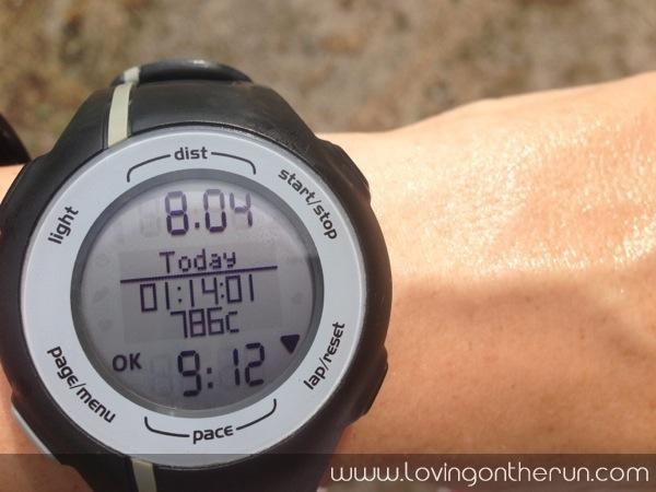 8 Mile Easy Run