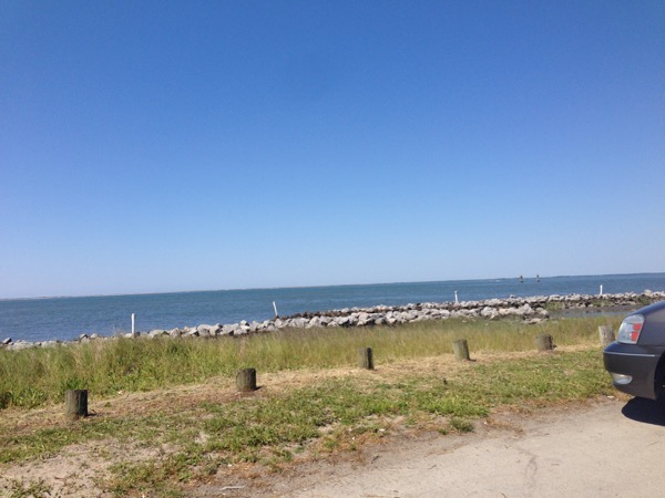Beach Running1