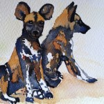 Watercolour painting. Waiting for the Pack (LBA009) Artist: Lori Bentley
