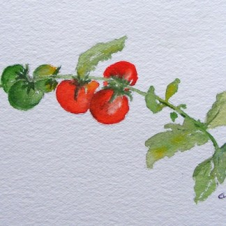 Watercolour painting. On the Vine (EVA006). Artist: Eileen Valder