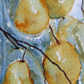 Watercolour painting. More Than a Pear (LBW003). Artist: Lorraine Brown