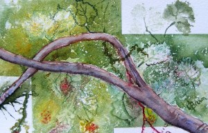 Watercolour painting. Spring on the Vine (LBW006). Artist: Lorraine Brown
