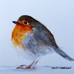 Watercolour Painting. Mr Robin (IOA017). Artist Ingrid Ormestad