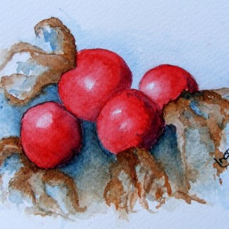 Watercolour painting. Red Delights (IOA022). Artist: Ingrid Ormestad