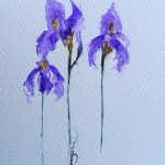 Watercolour painting. Iris Trio (IOA023). Artist: Ingrid Ormestad