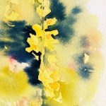 Watercolour Painting. Shades of Yellow (POB012) Artist: Polly Birchall