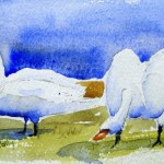Watercolour Painting. Swanning Around (POB013) Artist: Polly Birchall