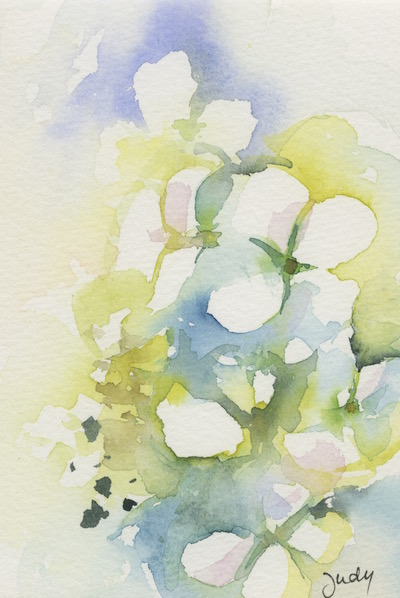 Watercolour painting. JBA018 Spring Flowers. Artist: Judy Barends