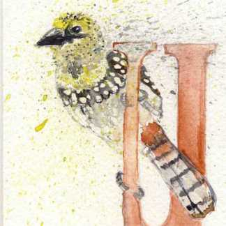 Watercolour painting. LBA078 Usambiru Barbet. Artist: Lori Bentley