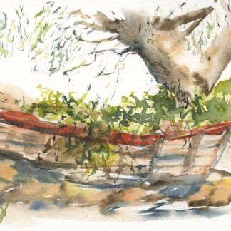 Watercolour painting. RWB0200 Old Boat in the Olive Grove. Artist: Vandy Massey