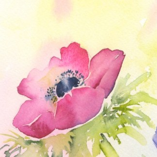 Watercolour painting. SPA016 Blush. Artist: Seonaid Parnell