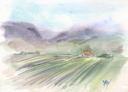 Watercolour painting. RWB0212 - Lavender Fields.