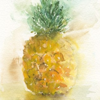 Watercolour painting. IKA001 Baby Pineapple Artist: Isabella Kramer