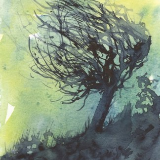 Watercolour painting. RWB0238 WIndswept.