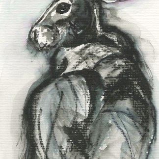 Watercolour painting. RWB0255 The Mystery Hare