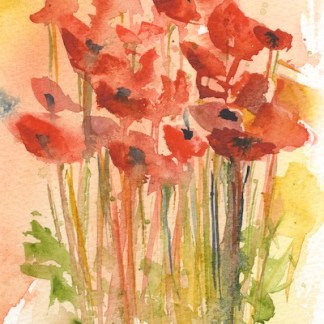 Watercolour painting. RWB0289 Wild Poppies 1. Artist: Vandy Massey