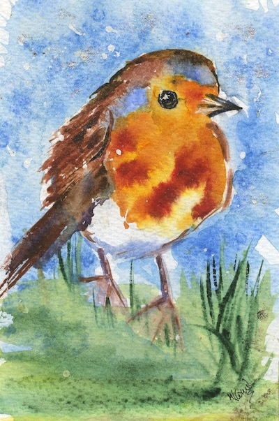 Watercolour painting. MCA023 Robin 2. Artist: Margot Cornish
