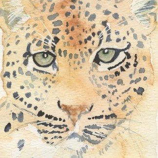 Watercolour painting. LBA094 Leopard Artist: Lori Bentley