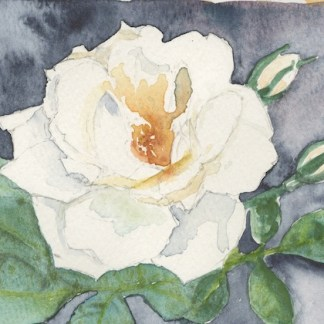 Watercolour painting. LBA095 Rosy Outlook. Artist: Lori Bentley
