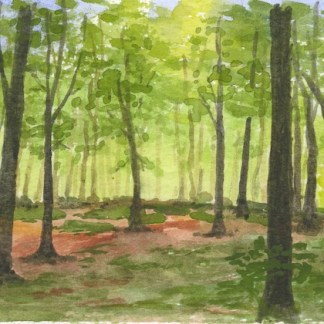 Watercolour painting. GWA002 Spring Woodland. Artist: Gillie Whittle