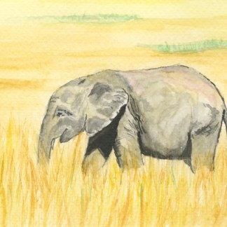 Watercolour painting. IGA001 Elephant Grass. Artist: Isobelle Gladstone