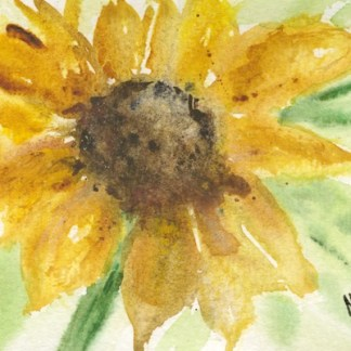 Watercolour painting. MCA029 Joy in the Sun. Artist: Margot Cornish