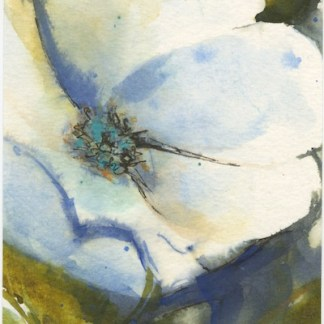 Watercolour painting. RWB0341 Midnight Bloom. Artist: Vandy Massey