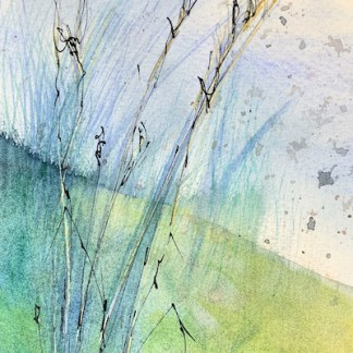 Watercolour painting. RWB0351 The Sound of Grass. Artist: Vandy Massey